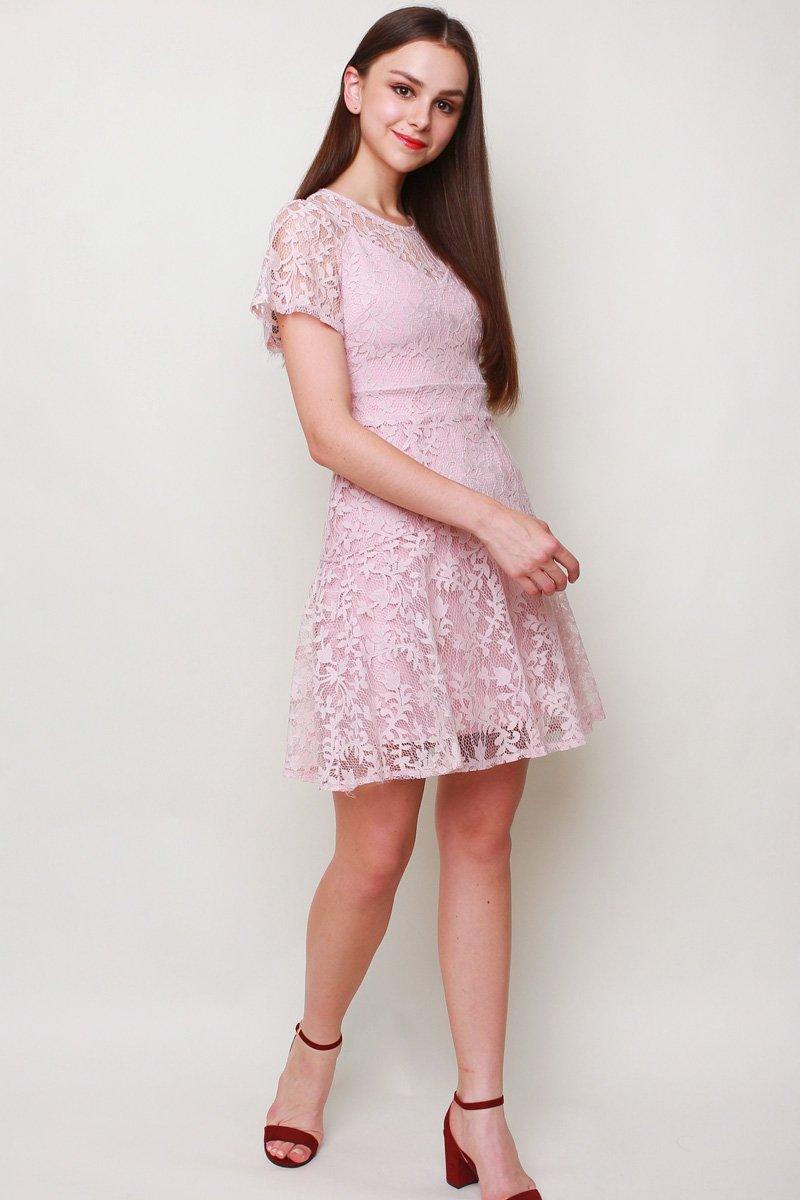 Eilis Lace Overlay Dress Blush