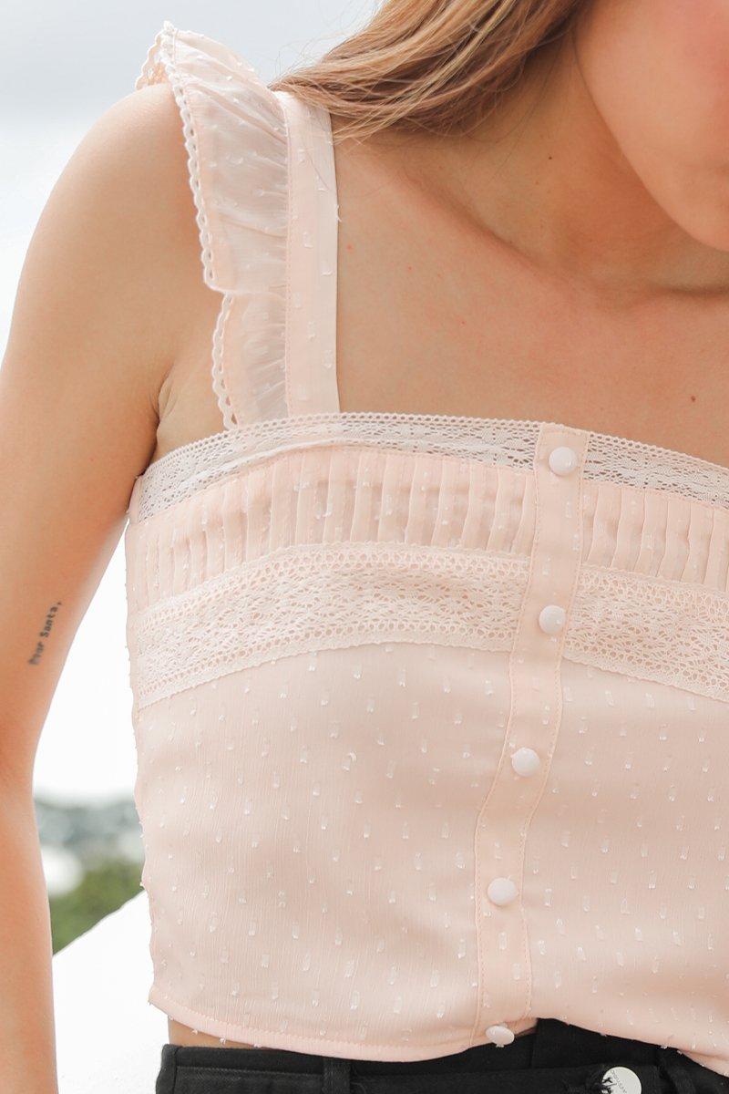 Theresa Chiffon Lace Crop Top Blush
